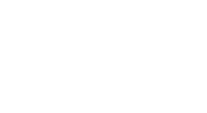 Converge: Partners in Action